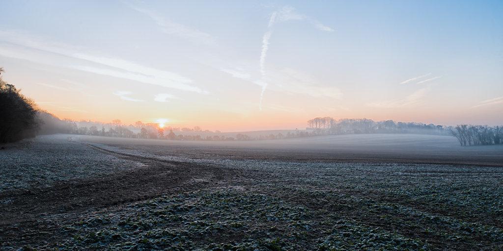 frost field 2